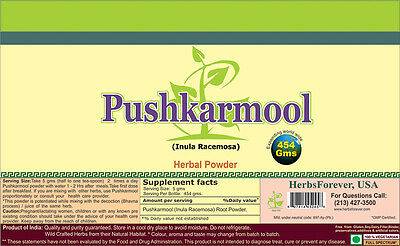 Elecampane Root Powder - Pushkarmool Powder (Root) (Indian Elecampane) (Bulk Herb Powder) 16 Oz, 454 Gms