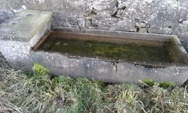 Concrete Water Trough