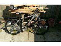 Magna giant bike