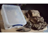 Assorted reptile equipment (lot 2)
