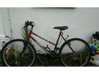 Ladies red mountain bike