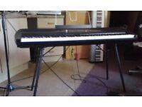 Korg SP-280 Digital Piano plus Stand