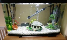 87 Litre / 75cm Fish Tank Aquarium with LED Lighting + Heater + Filter + Gravel *Immaculate*