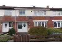 3 bedroom house in Fuschia Gardens, Hebburn, NE31 (3 bed)