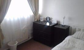 single room to rent in quiet area