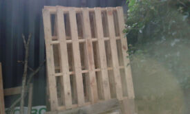Wooden Pallets - various sizes. £1.50 each