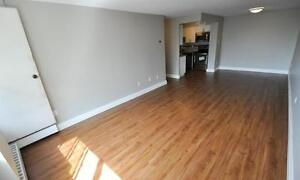 Open concept 1 & 2 bedroom suites! Newly remodeled! Cambridge Kitchener Area image 7