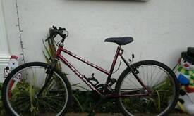 Ladies red mountain bike