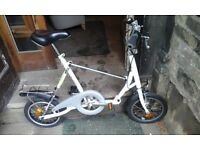 Fold up bike with carry case