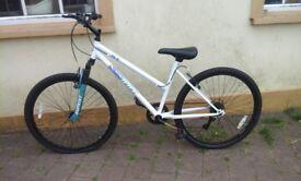 UNWANTED GIFT woman's bike