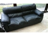 Free black leather the setter sofa