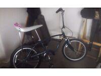 Thunderbird Ridgeback Bike