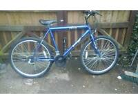 Mens mountain bike feel free to contact me