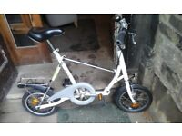 Fold up bike with carry case in great condition