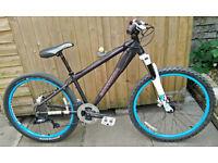 Customised mountain bike, dirt jump bike, hardtail, medium, 7-speed