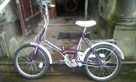 Folding bike stoaway 3