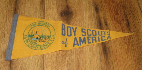 VTG 1960s Camp Wauwepex BSA Boy Scouts Nassau County Council Mini Pennant Rare