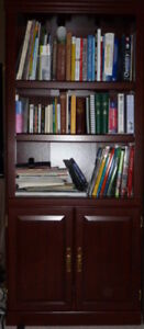 Office Bookcase with 2 shaker doors and file cabinet