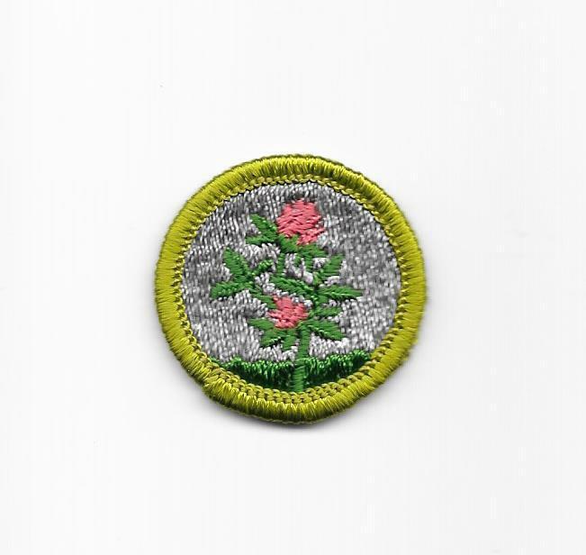Forage Crops 1961-1971 G1 Type G Cloth Back Merit Badge Boy Scouts BSA