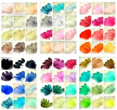 Feathers For Dresses (70 Colors Loose Goose Feathers for Millinery Hat Trimming Headpieces Craft)