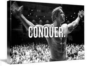 ARNOLD SCHWARZENEGGER GYM CANVAS ART PICTURE HUGE A1 SIZE 32 X 22 NEW