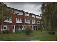 Molesey Kingston Surrey Spacious 3-bed house in Lovely Location