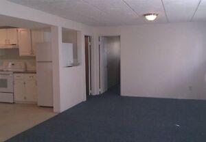 Great basement with a great garage!  Edmonton Edmonton Area image 3