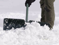 Snow Removal Labourers - $18/h to start