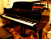 Piano and/or Theory Lessons - downtown/St. Lawrence Market area