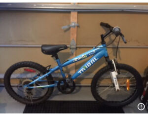 Tribal Kids Bike