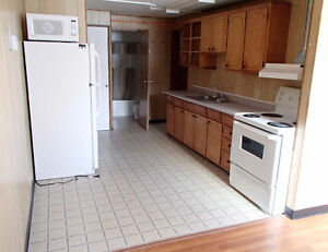 Downtown 2 bedroom basement suite with great light