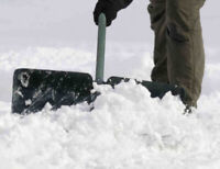 Snow shoveling starting at only $25