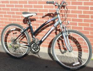 Nakamura CB100 Hybrid Bicycle - Like New