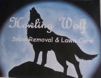 FALL CLEAN UPS & SNOW REMOVAL