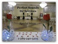 Perfect Sounds DJ Services-Oshawa
