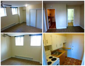 small basement bachelor / studio apartment - $850 - hydro incl