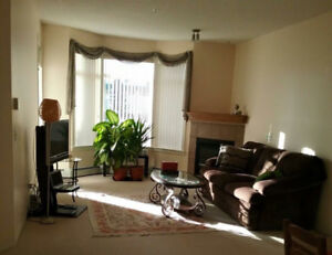 5 minutes to Chinook, clean and new one bdrm+one large den