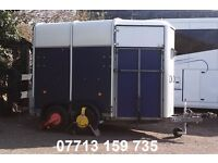IFOR WILLIAMS 505 2 HORSE TRAILER WITH HORSE CAMERA