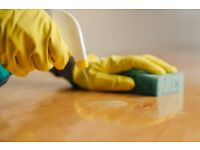 INSURED, FULLY VETTED CLEANERS, DOMESTIC CLEANING, END OF TENANCY CLEANING and DEEP CLEANING