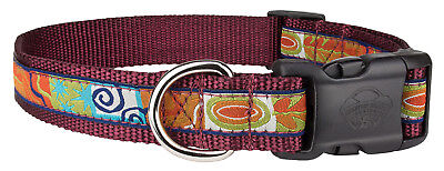 Deluxe Fall Frenzy Woven Ribbon on Burgundy Dog Collar Limited Edition Woven Ribbon Collar