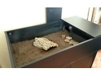 Tortoise Pet Table