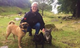 Super Furry Kids . Dog Walker . Puppy Visits . Small Pet Care . Chorlton M21, M16