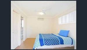 Room for rent caboolture $170 Caboolture South Caboolture Area Preview