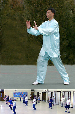 Dr. Chen's Tai Chi Qigong workout DVD Video level 1 / Tai Chi GongFa 101
