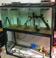 77 Gallon tank and stand. Complete $250
