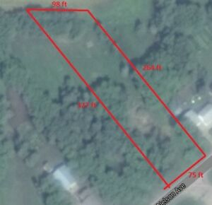 1/2 acre of land in Blaine Lake