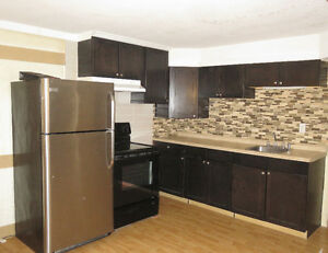 $850 per month --  Large Renovated Pineridge Suite