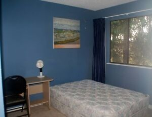 Room available for home stay near SFU