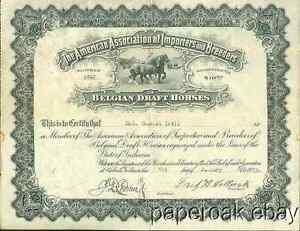 1923-American-Association-Of-Importers-amp-Breeders-Belgian-Draft-Horses