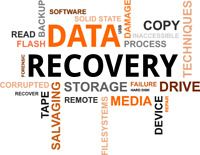 LOST OR DELETED DATA RECOVERY